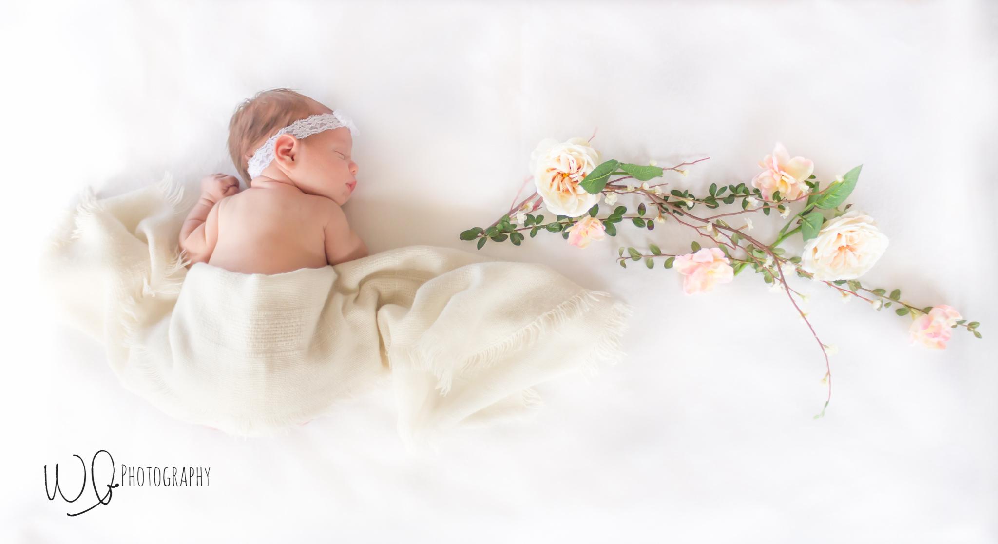 lifestyle vs posed newborn photography