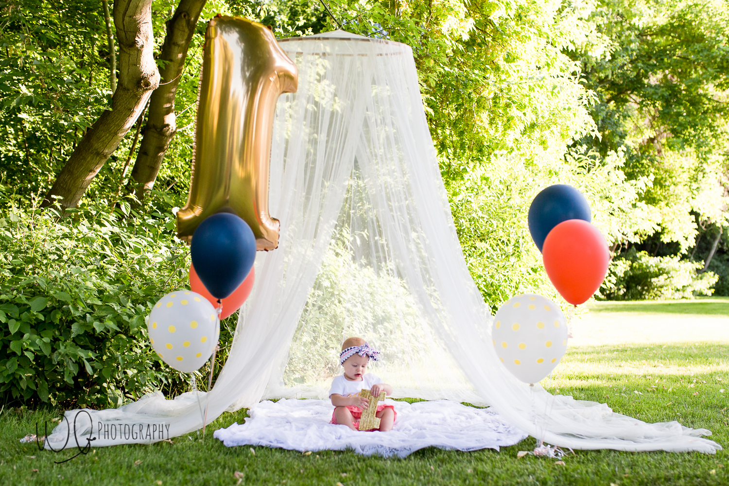 one year old canopy photo shoot