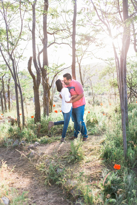 Utah poppy field photos