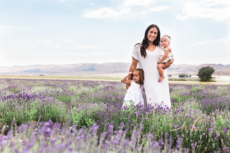Utah Lavender fields