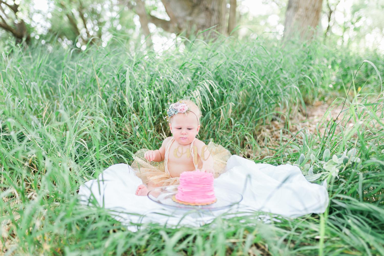 Utah county cake smash photographer