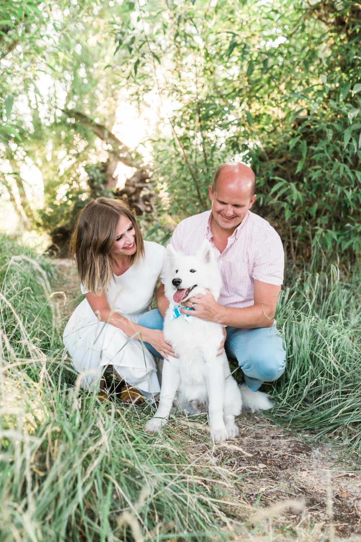 Utah dog portraits