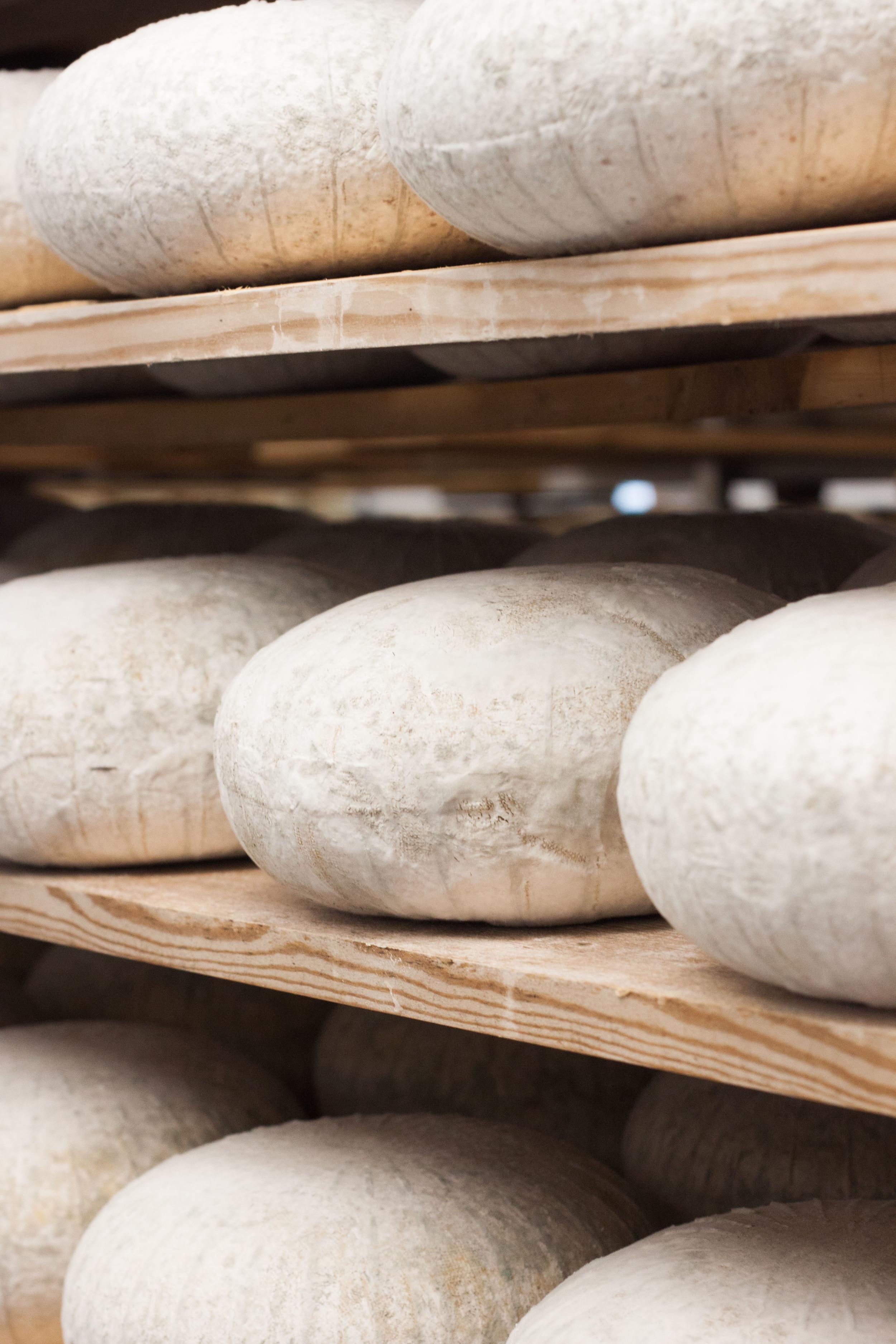 bath_wyfe_cheese_shelf