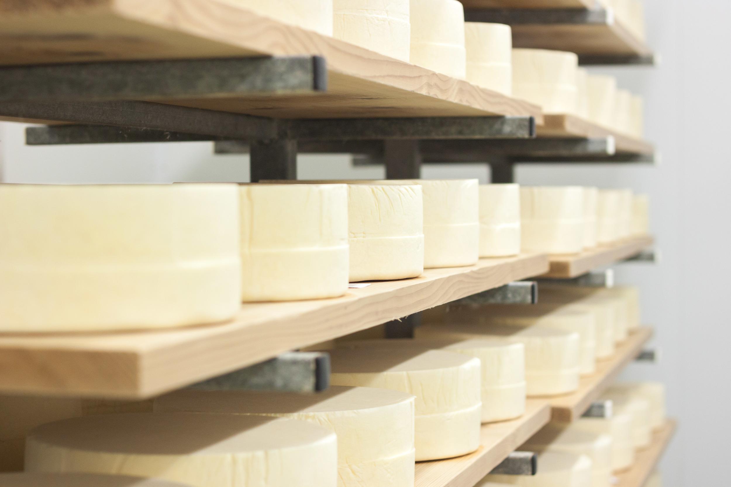 trethowans_dairy_new_cheese