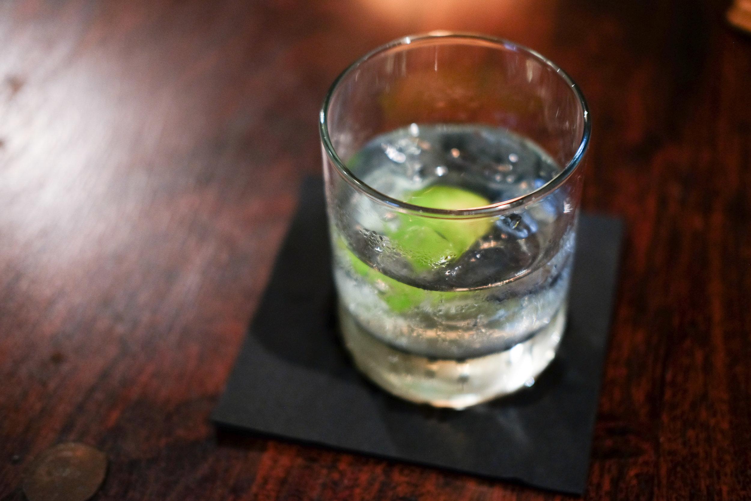 bristol_dry_gin_tonic