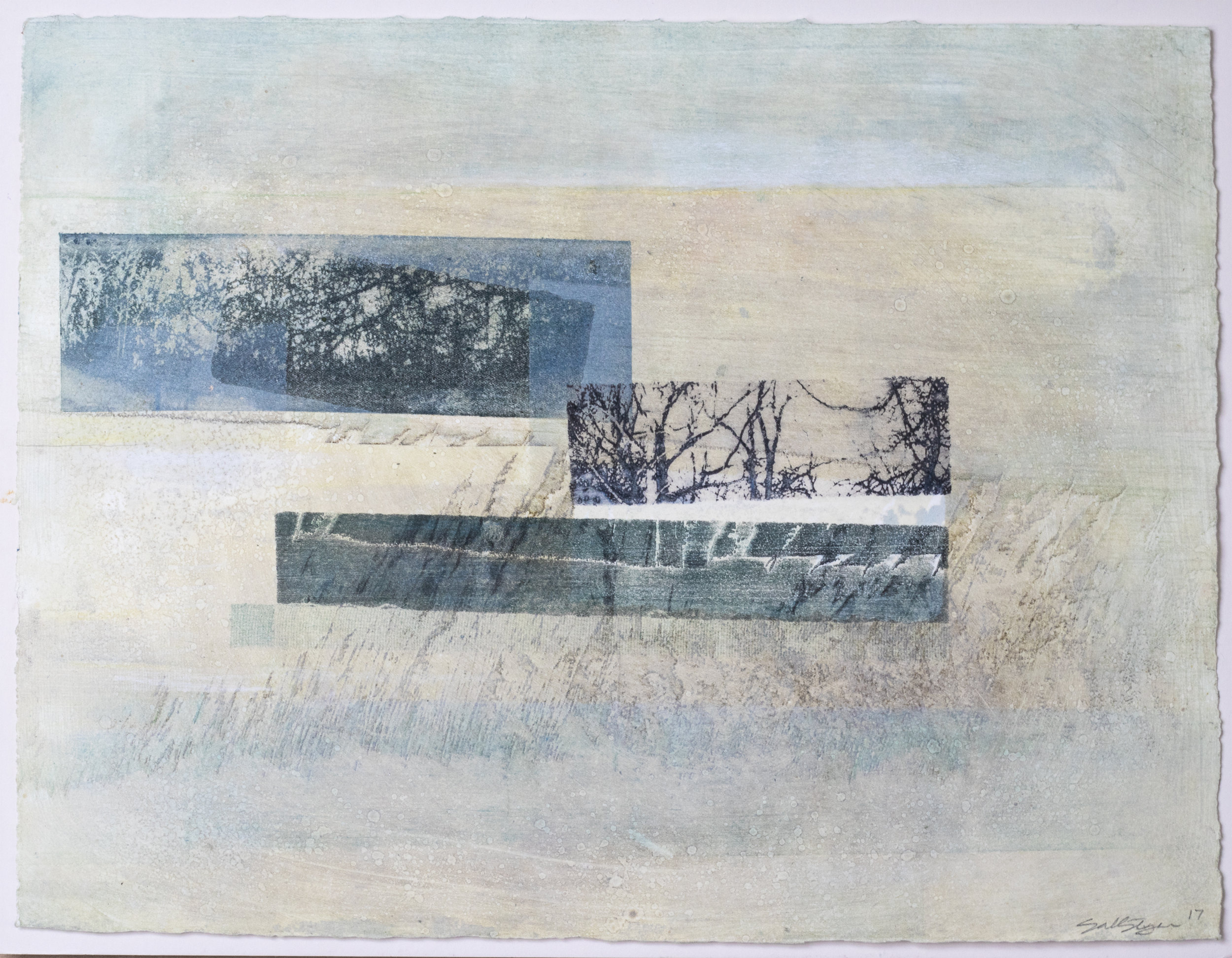 Hide No. 8 Solar etching, mono print & mixed media on paper 38 x 28cm