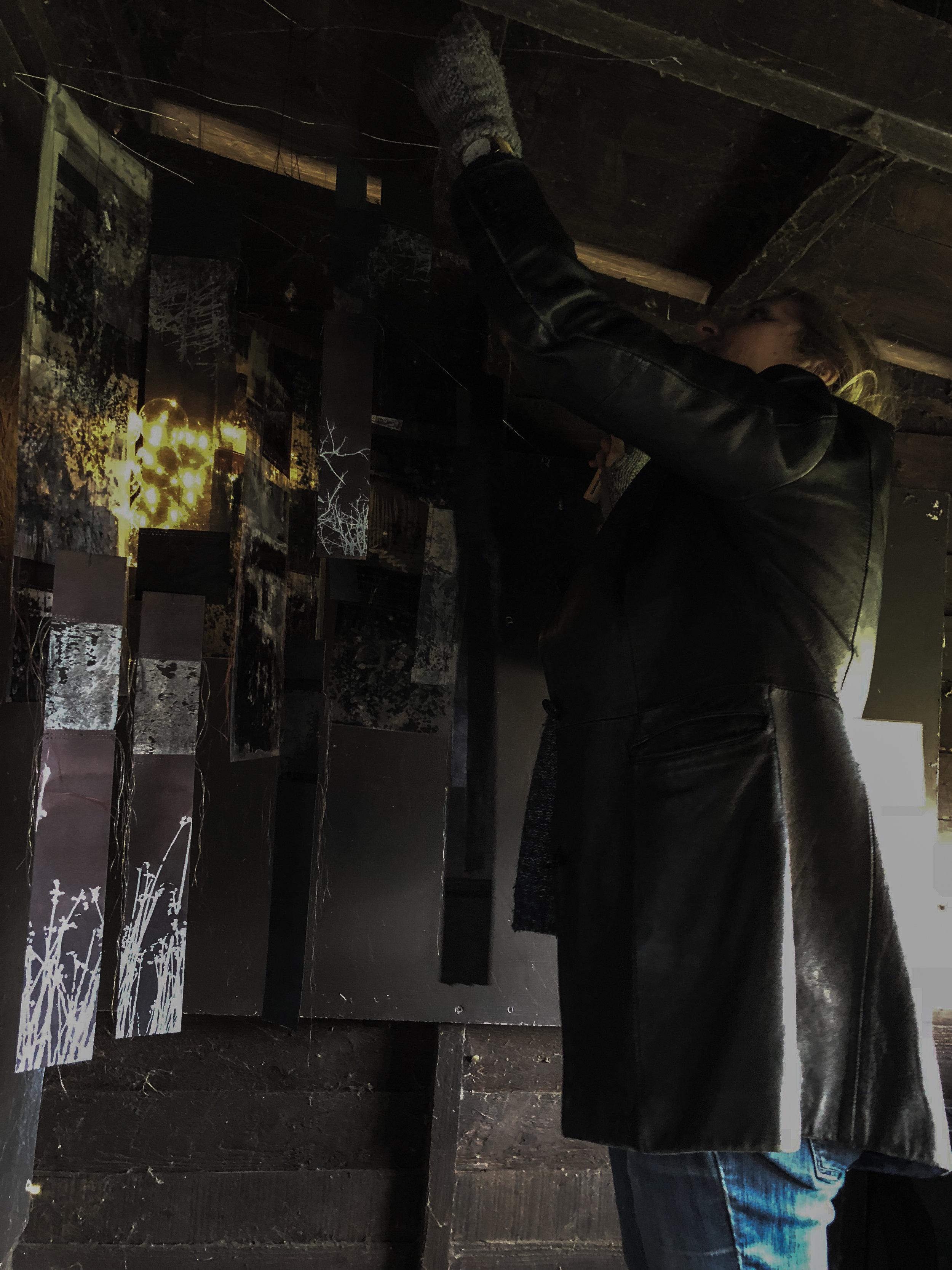 Sally installing work in Charlies Hide