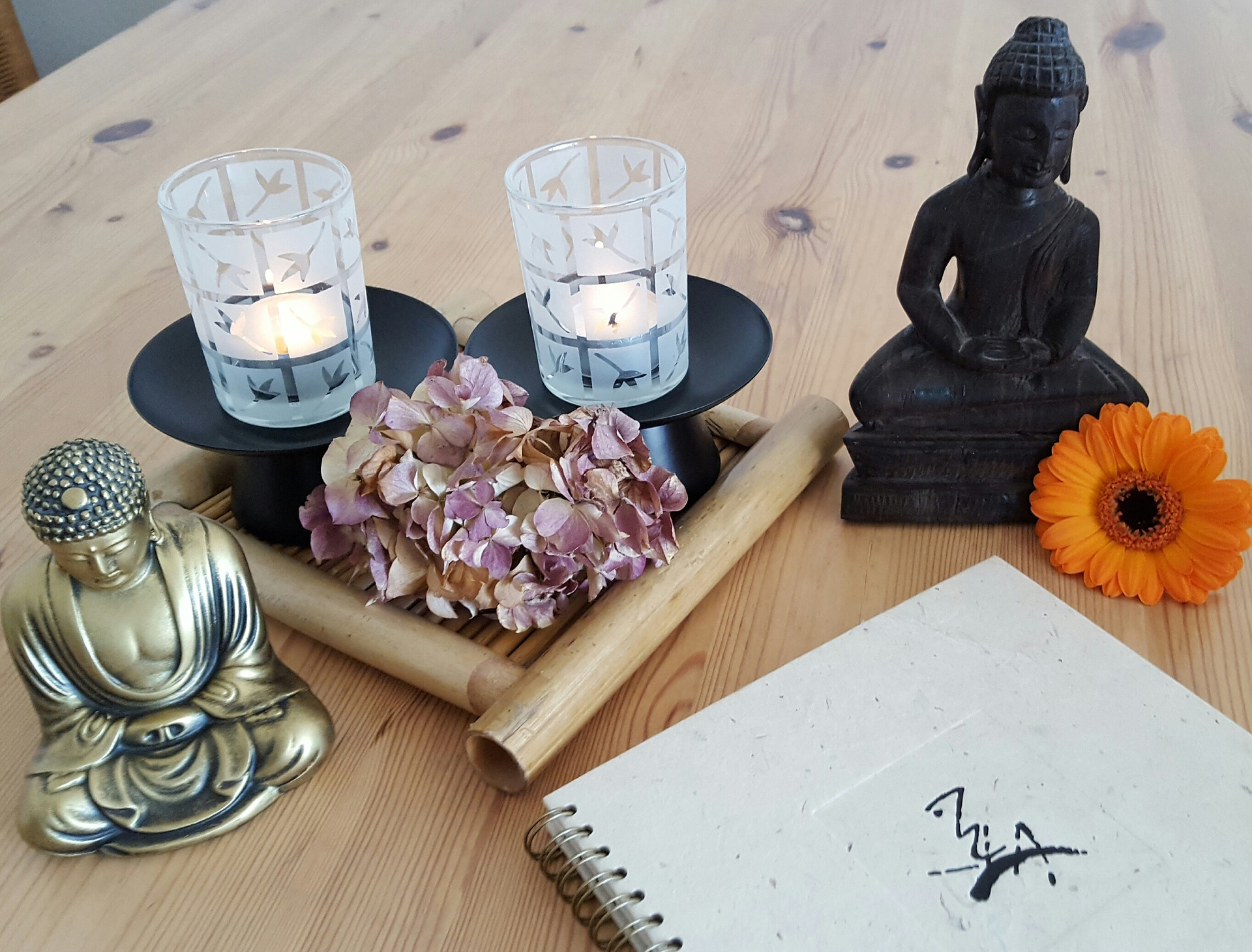 Massage and Wellness Workshops - We hold regular workshops across the state, from self massage to sensual massage, and aromatherapy workshops, you too can join and learn skills a bring the spa into your home.