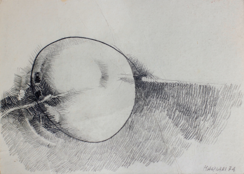 Cellula (Cell) - matita e carboncino su carta (pencil and charcoal on paper) - 1974