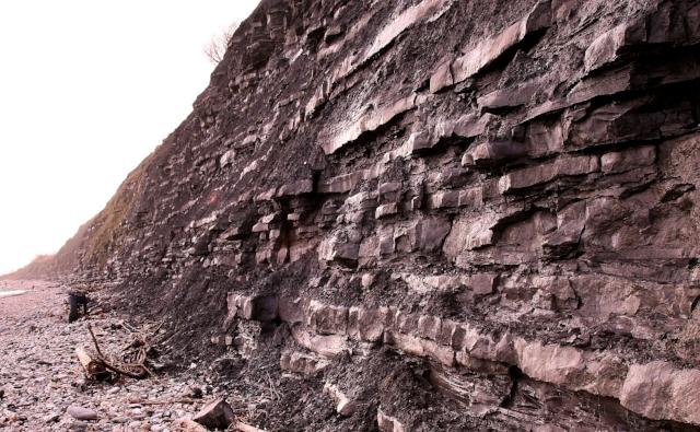 Rock sedimentation at the blue lias cliffs at Lyme Regis - Wikipedia