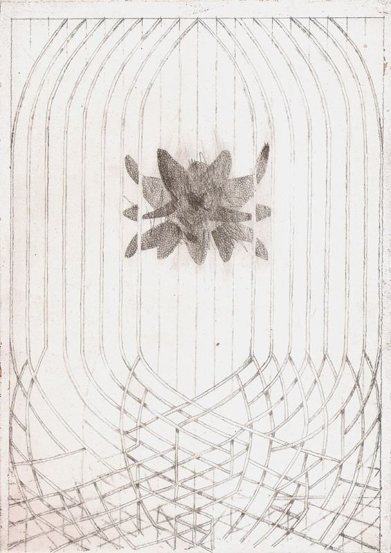 """Flight II"" (2011)<br>Graphite on gessoed paper, 12 x 8 in."