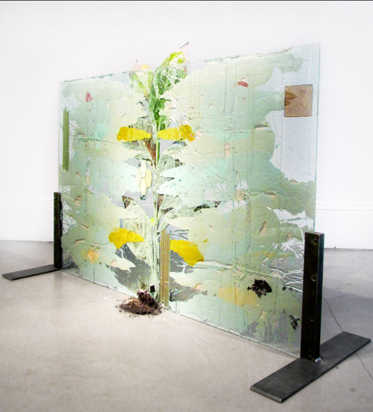 """Subaqueous Canna Pretoria (Rorschach)""<br>Plant, resin, paint, glass, ceramic tiles.<br>58 x 40 inches (2013)"