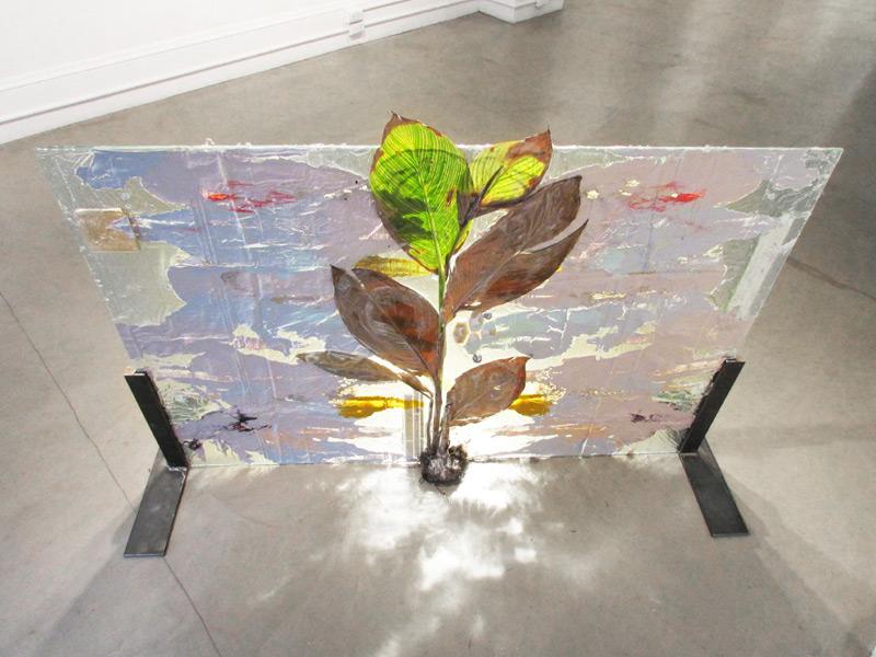 """Subaqueous Canna Pretoria (Rorschach)""<br> Plant, resin, paint, glass, ceramic tiles.<br>58 x 40 inches (2013)"