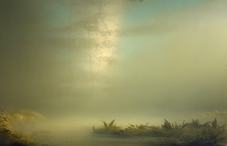 "Kim Keever  ""Palm 12"" (2008) C-print, 32 x 44 inches"