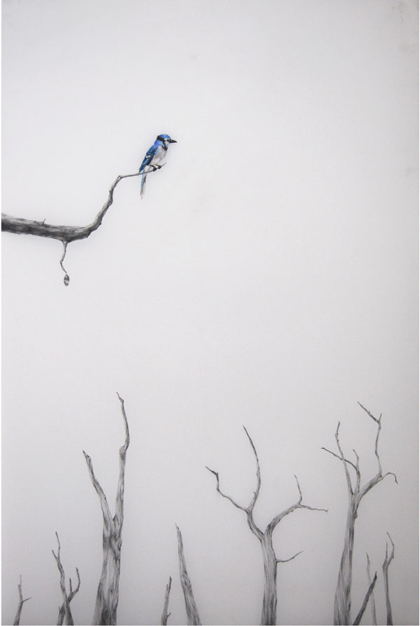 """Blue Bird II"" (2010) Oil and graphite on mylar, 30 x 41 in."