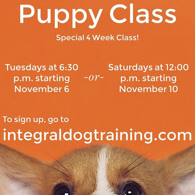 Classes are starting soon!