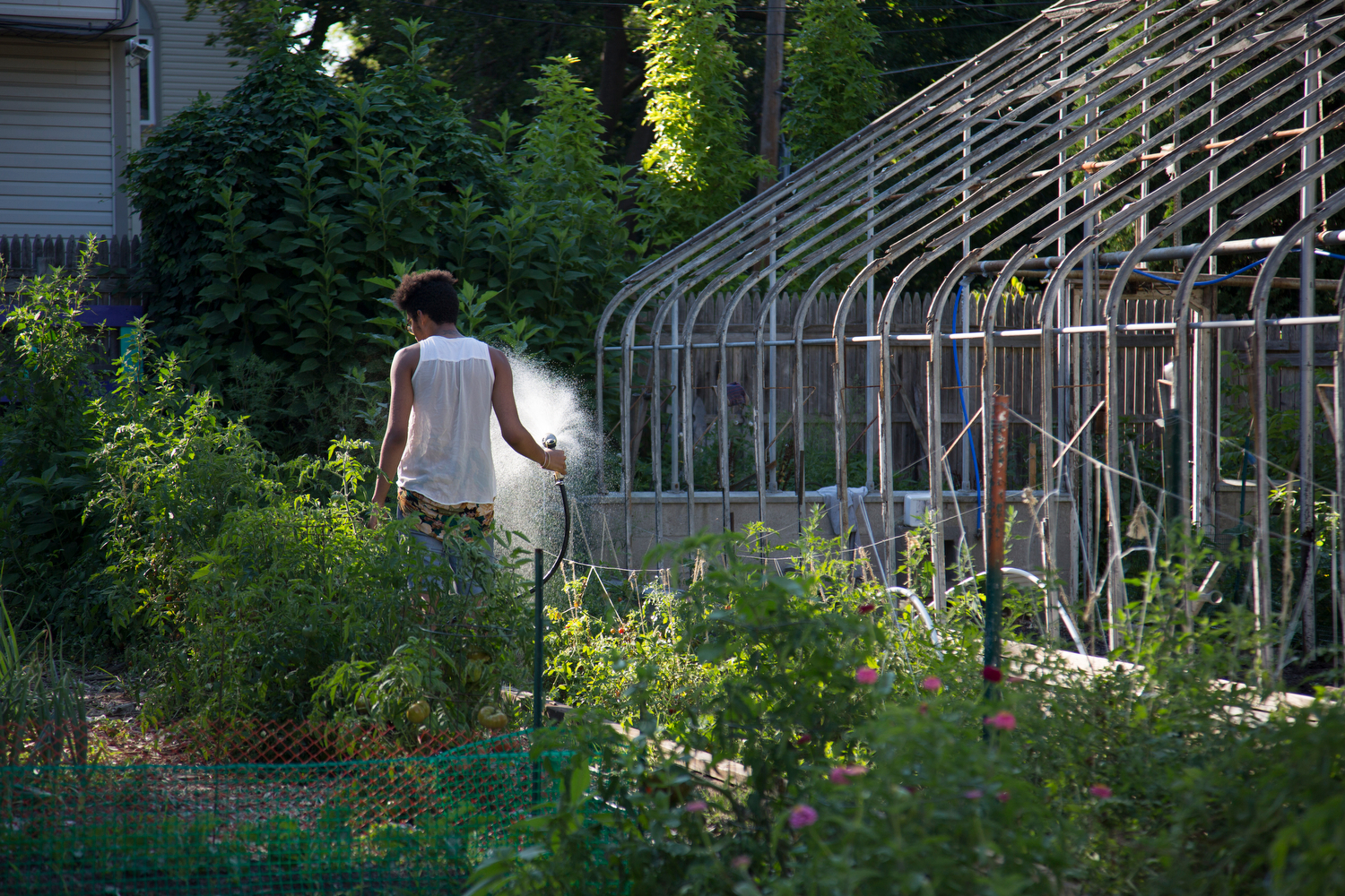 Jamison Clark, 16, waters the plants at the Seedfolk City Farm before the open house, Rochester, N.Y., Aug. 7, 2015.