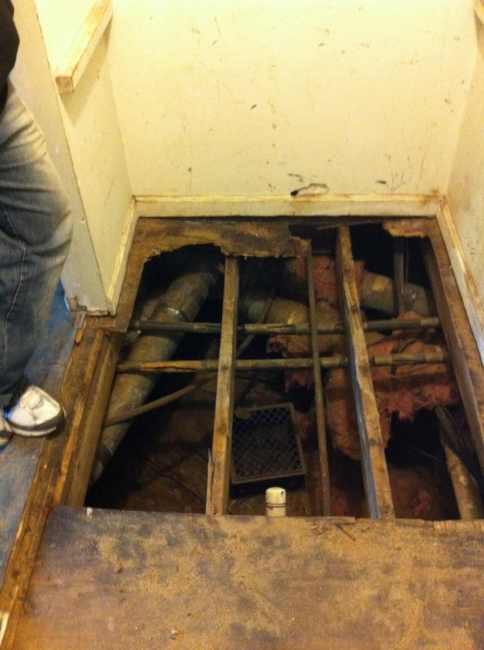 We took out all the rotten subfloor to find rotten joists. Lucky us!