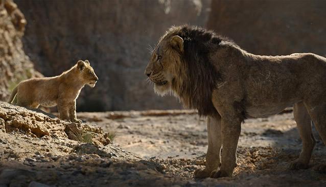 Lion_King__Large.jpg