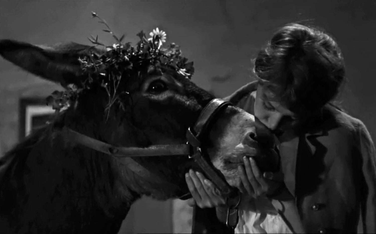 """Bresson The Donkey as Lamb Led to the Slaughter: """"Au Hasard Balthazar"""" — Joseph Susanka"""