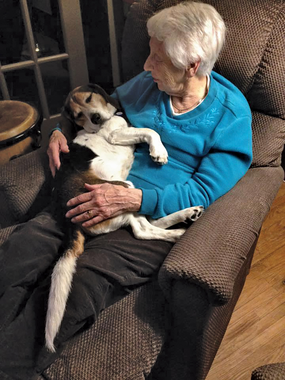 Putting a rescued dog in a foster home gives a sense of how the animal will respond in a typical domestic environment, something pound staff never gets a chance to see but offers potential adopters valuable information.Photo courtesy Home Again