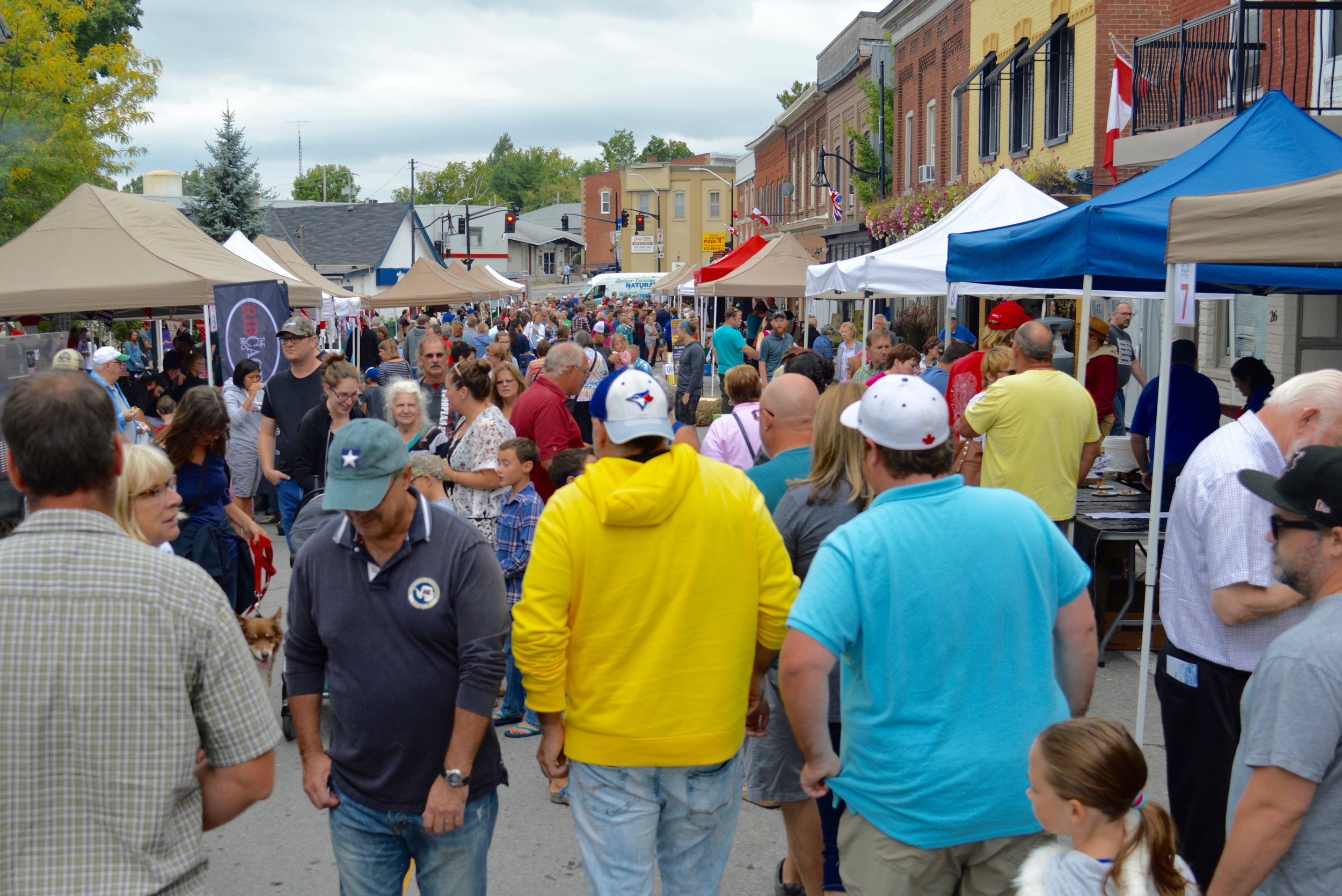 The scene on Mill Street in Stirling as well over 2,500 people took in the 8th annual Water Buffalo Festival. Vendors offered up reasonably priced food samples, all made from water buffalo products. The event was organized by the local Lions and Rotary Clubs and a fundraising success.