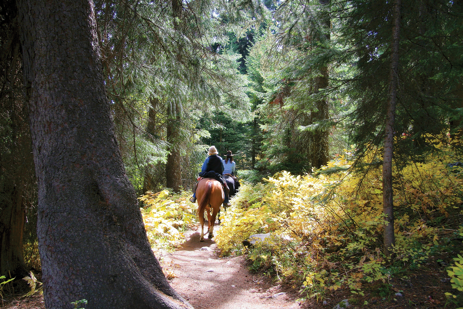 Many people connect with nature by riding horseback through the Heritage Trail. Photo courtesy Eastern Ontario Trails Alliance.