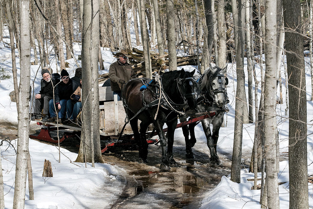 Visitors to the  O'Hara  site enjoy a horse-drawn sleigh ride. Photo courtesy  O'Hara Mill Homestead & Conservation Area.