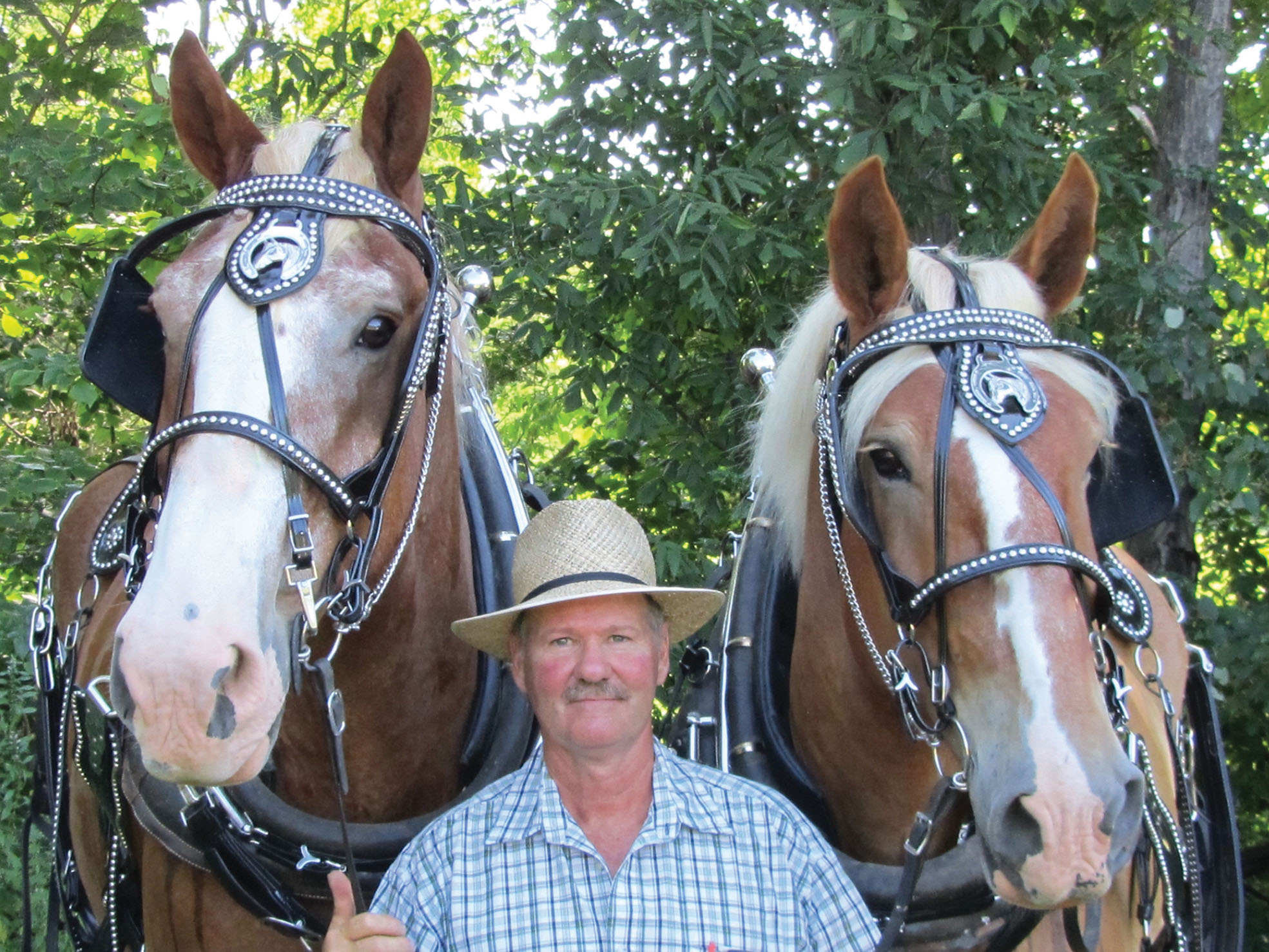 When not assisting his real estate clients, Kim Hadwen can be found caring for horses on his farm he shares with his wife, Jeanne. Photo courtesy Kim Hadwen