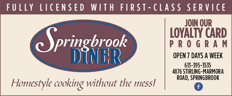 SpringbrookDiner_Revised_375x155 (1).jpg