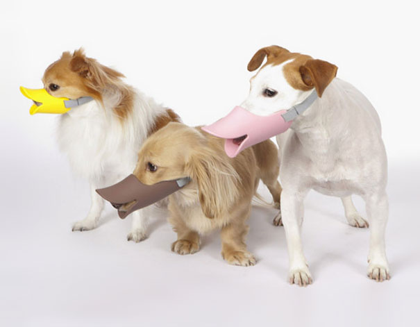 http://www.boredpanda.com/quack-duck-billed-muzzle-for-dogs/