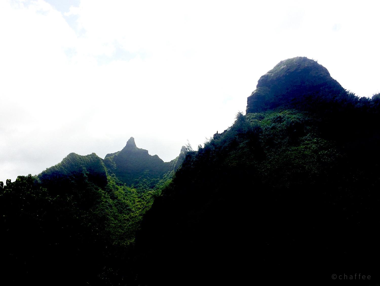 16_chaffee-kauai-02.jpg
