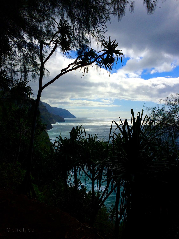 16_chaffee-kauai-05.jpg