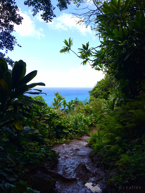 16_chaffee-kauai-06.jpg