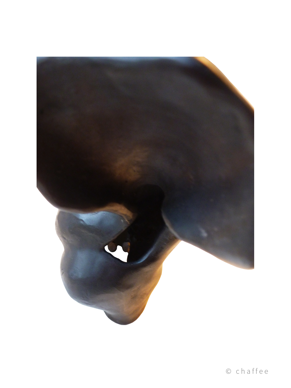 18_chaffee-bronze4-030c.jpg