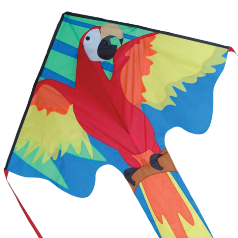 44268p_Macaw-zoom_large.png