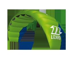 kite-lizard.png