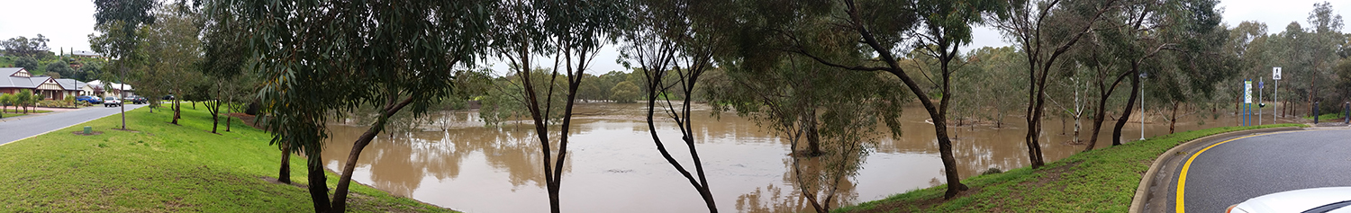 Riverview Drive in Hewett is living up to its name, with the water lapping over the walking trails  Photo: Writerhaulic