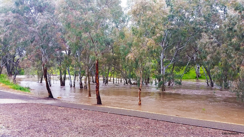 The water had risen pretty high at Riverview Drive  Photo: Writerhaulic