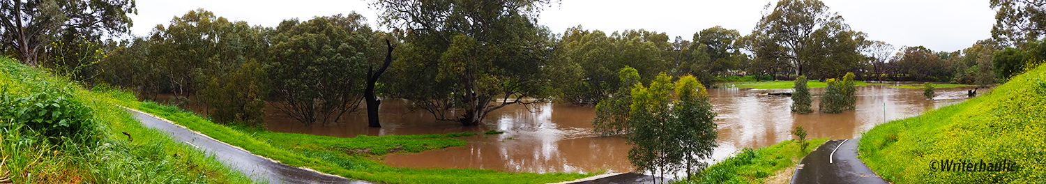 The view looking east from Reidsview towards Gawler West towards the Gawler River  Photo: Writerhaulic