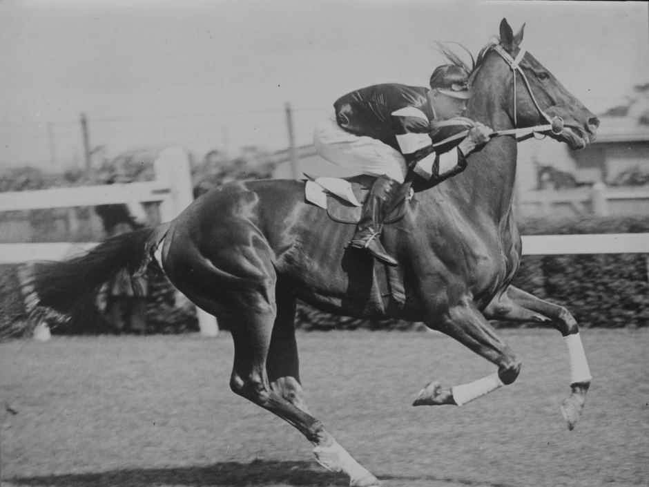 Jim Pike rides Phar Lap to victory  Photo: Charles Pratt, courtesy State Library of Victoria