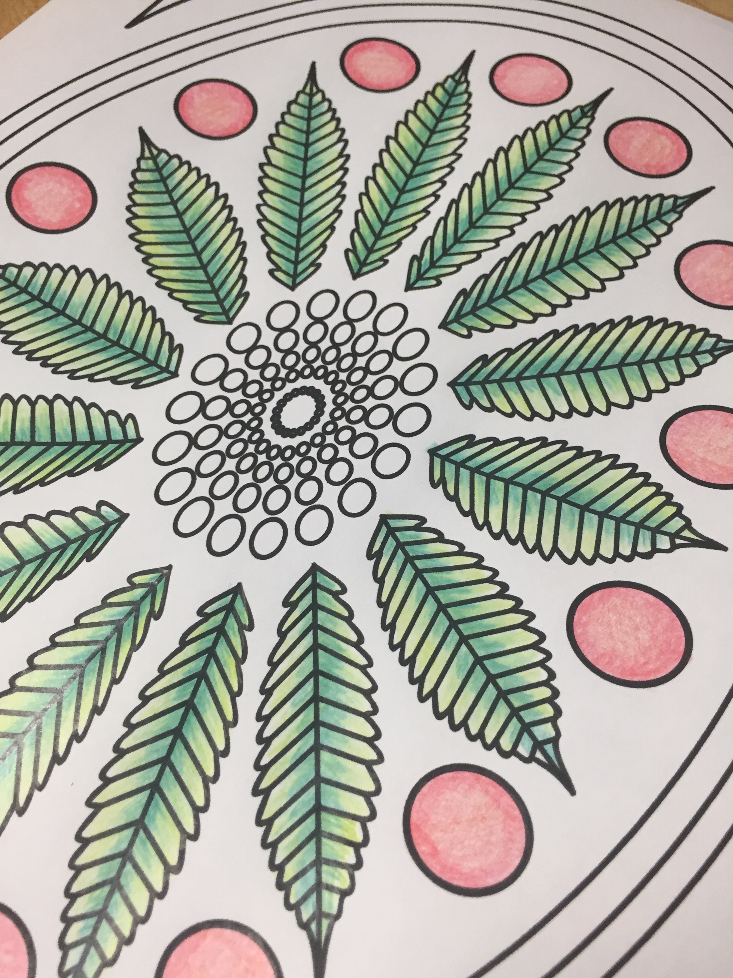 marijuana leaf stoner adult coloring