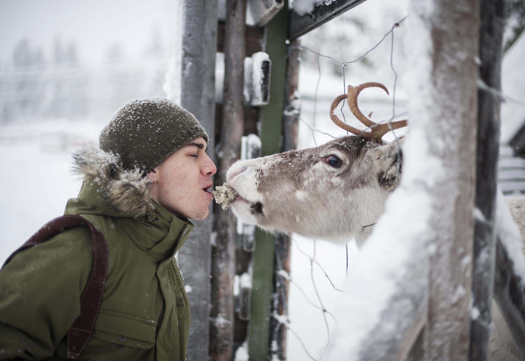Sami Reindeer gatherings in Lapland, Finland, by Nadim Kestila