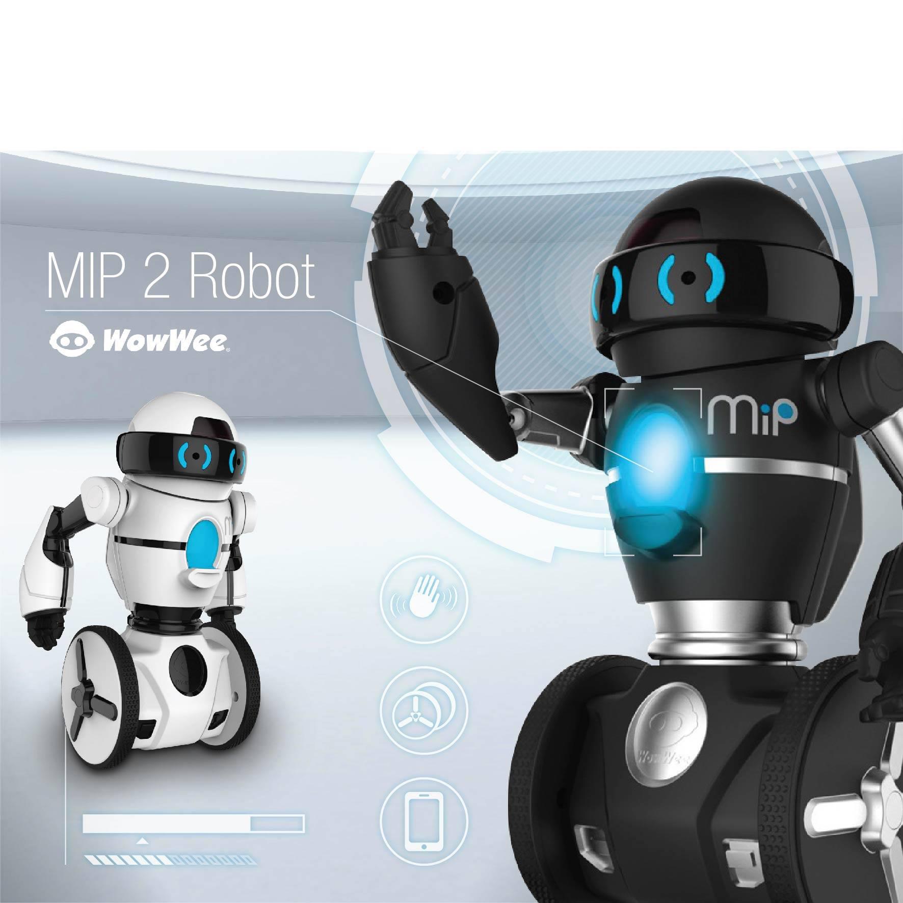 Fun-MIP 2 Robot_01.jpg