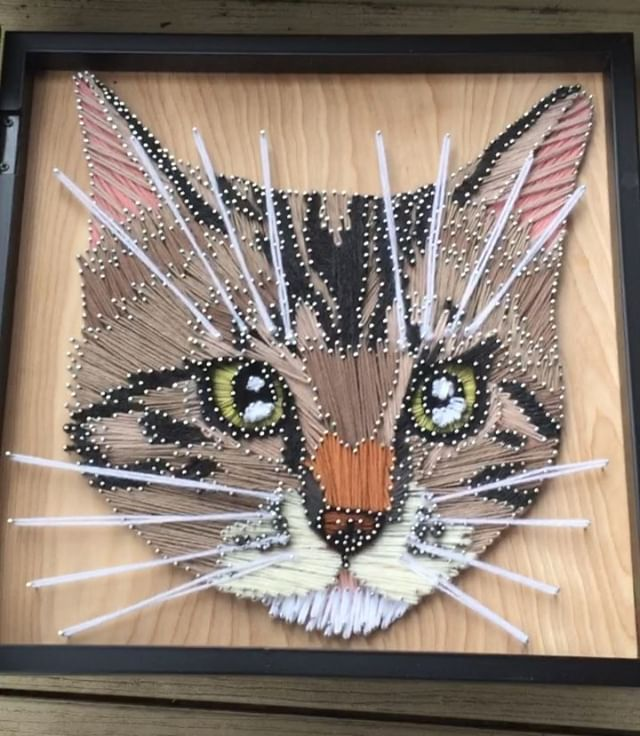 This was a tough one, I might have to start charging extra for stripey ass cats with big whiskers. I used two different greens in the eyes as well. #yarnsandnoble #petportraits . . . #cats #petportraits #yarn #yarnart #cats #stringart #catsofinstagram #catart #catportrait #catportraits #yarnporn @cats_of_instagram @cats_of_world_ @catloversclub @catartshowla