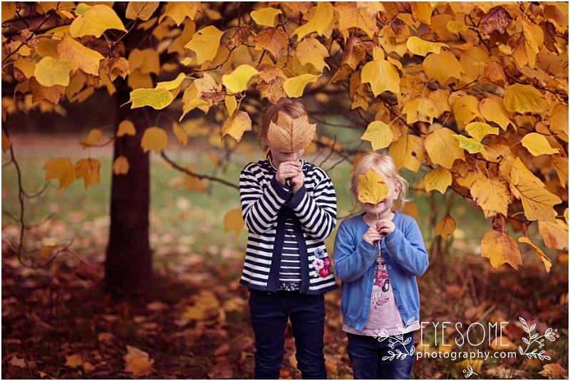 Autumn leaves provided an impromptu game of hide and seek for the grandchildren. I have no idea how I found them!