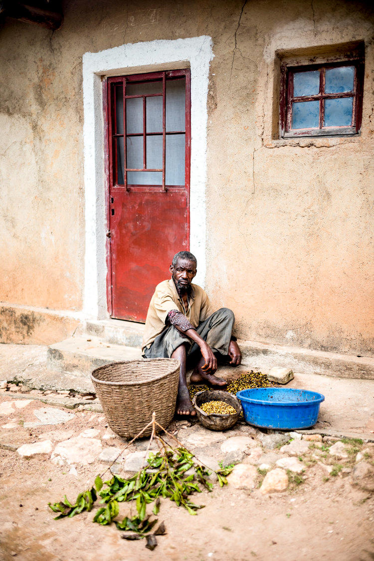 Alan Schaller - London Photojournalist - Rwandan Coffee 9.jpg