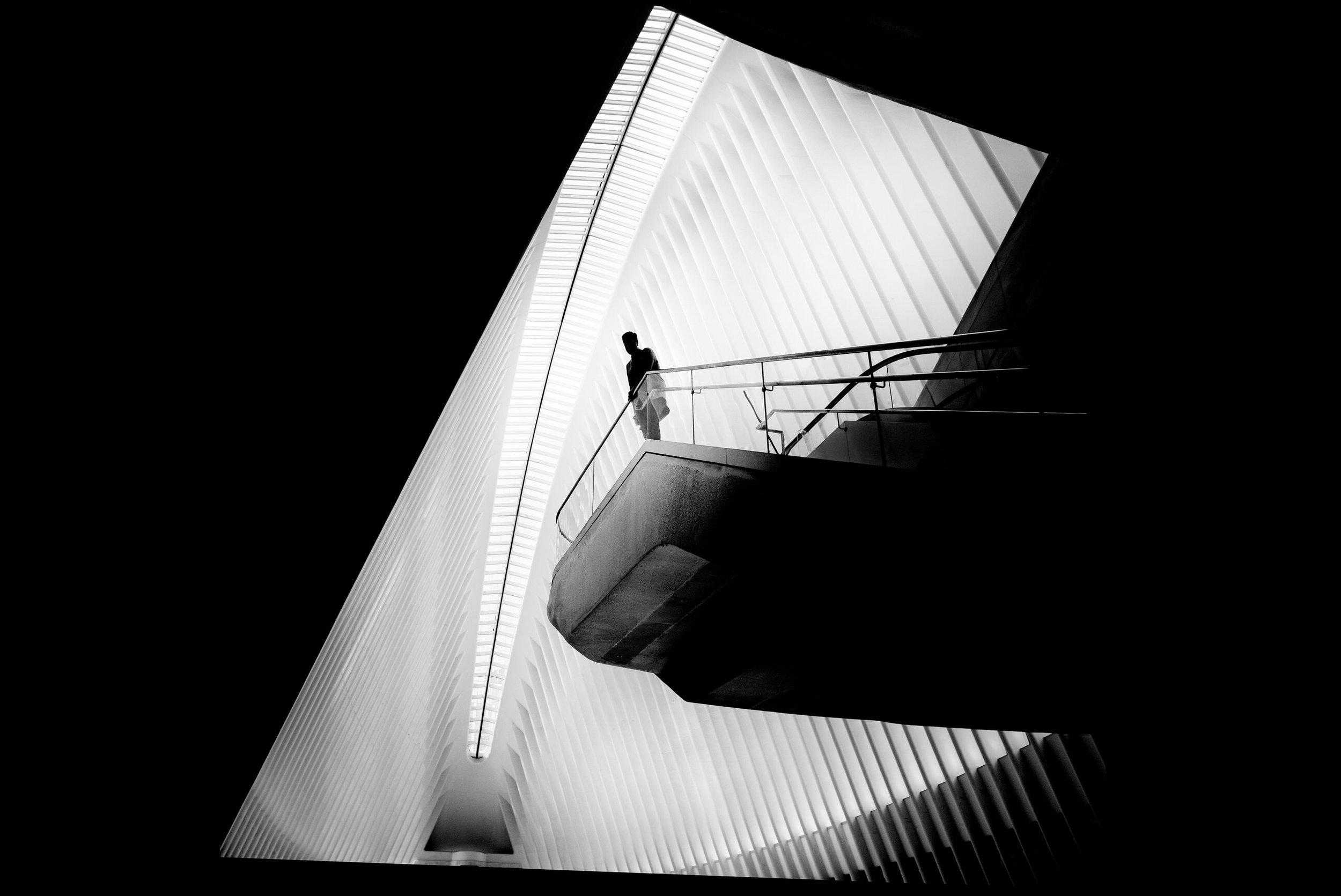 Alan Schaller Manhattan 16.jpg