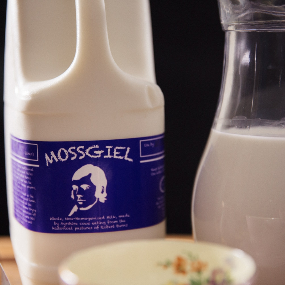 Mossgiel Milk from Ayrshire carton with jug of milk and china tea cup.
