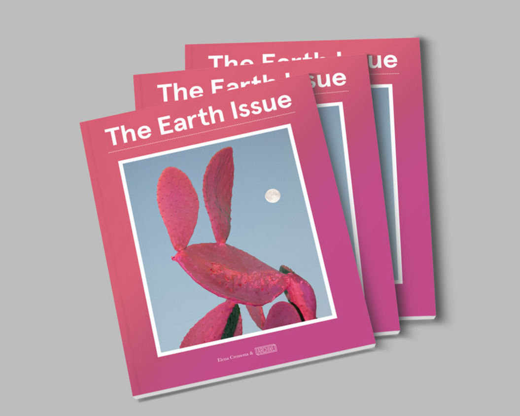 2017  Archive Collective Magazine-     the earth issue   (cover)